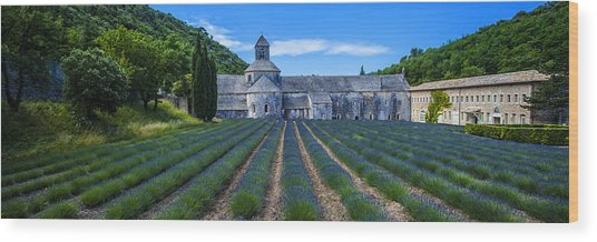 Senaque Abbey - Provence Wood Print