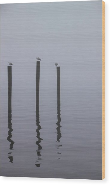 Seneca Lake Morning Mist Wood Print