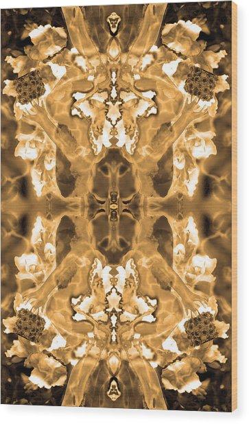 Sepia Bag Fairies 1 Wood Print