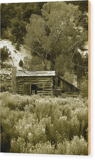 Sepia Country Cabin Wood Print