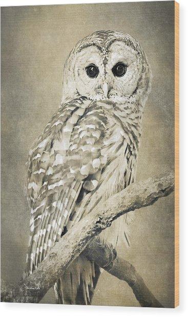 Sepia Owl Wood Print