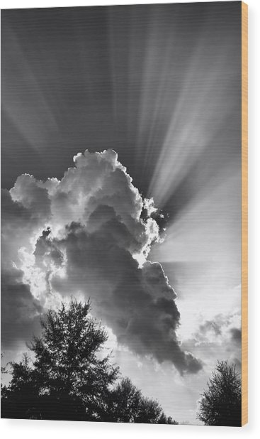 Wood Print featuring the photograph September Rays by Ben Shields