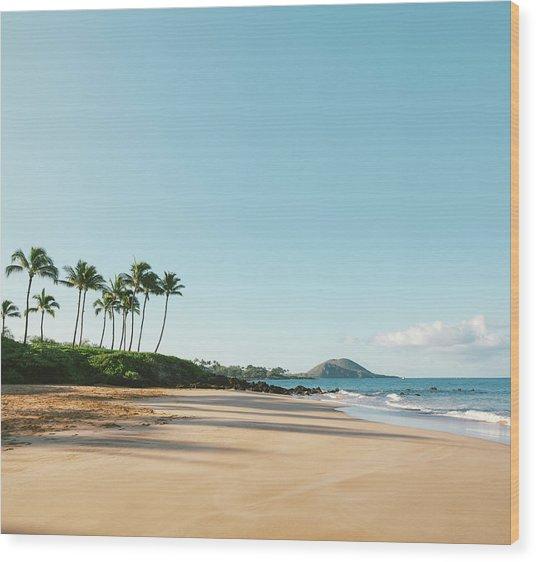 Serene Beach Wood Print by M Swiet Productions