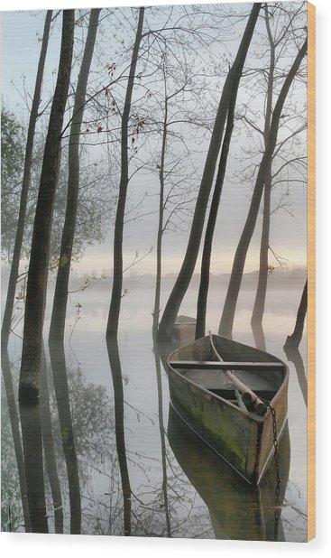 Serene Dawn Wood Print