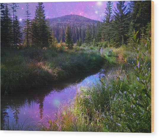 Serene Mountain Moment Wood Print