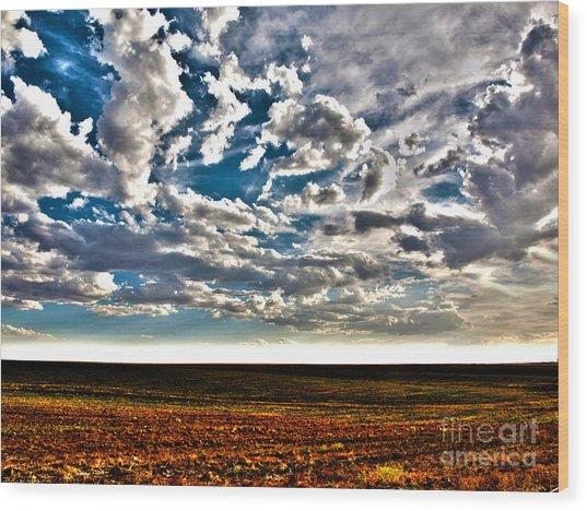 Serene Skies Wood Print by Christian Jansen