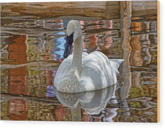 Serenity In Color Wood Print by Rick Lewis