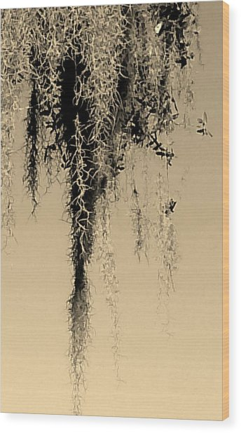 Serenity In Sepia Wood Print