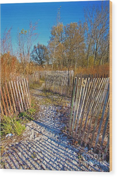 Serenity Trail.... Wood Print