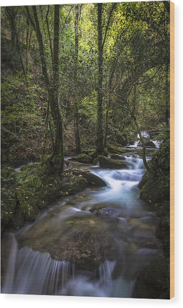 Sesin Stream Near Caaveiro Wood Print