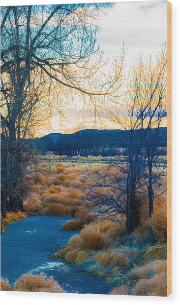 Setting Sun At Rocky Mountain Arsenal_2 Wood Print