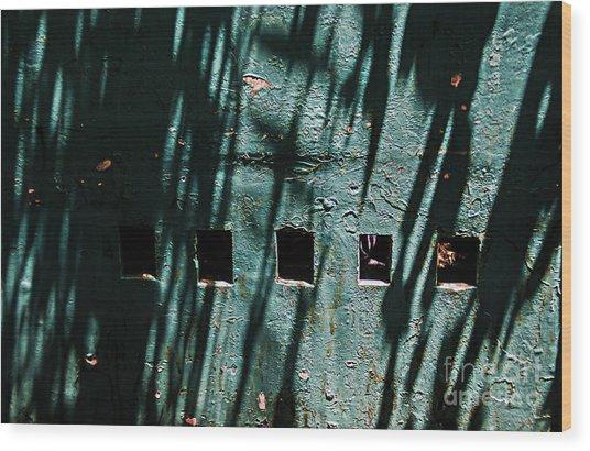 Sun-shaded Walls Wood Print