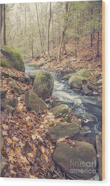 Shade Of November Wood Print