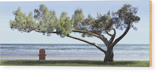 Shade Tree Panoramic Wood Print