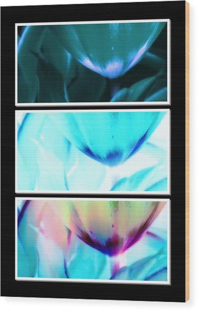 Shades Of Colour 2 Wood Print