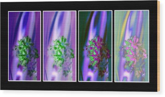 Shades Of Colour 3 Wood Print