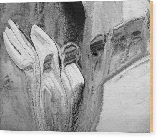Shades Of Grey 30 Wood Print