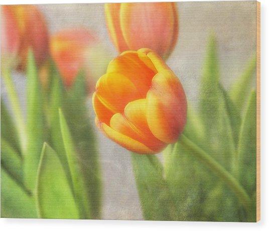 Shades Of Spring Wood Print