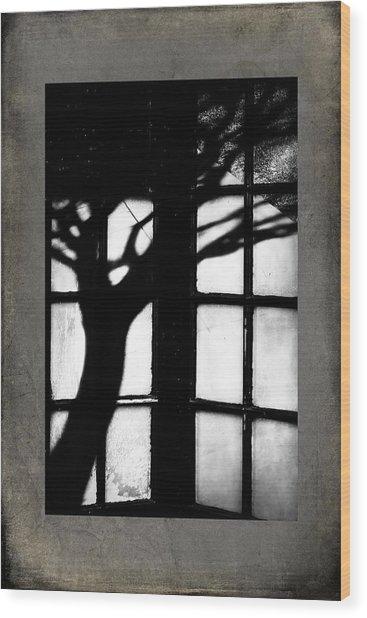 Shadow Wood Print by Bobbi Feasel