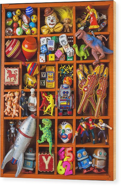 Shadow Box Full Of Toys Wood Print