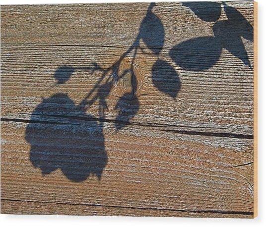 Shadow Of Beauty Wood Print