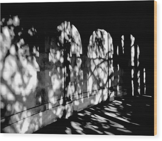 Shadow Play - Black And White Wood Print