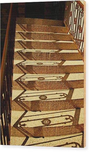 Shadow Steps Wood Print by JAMART Photography