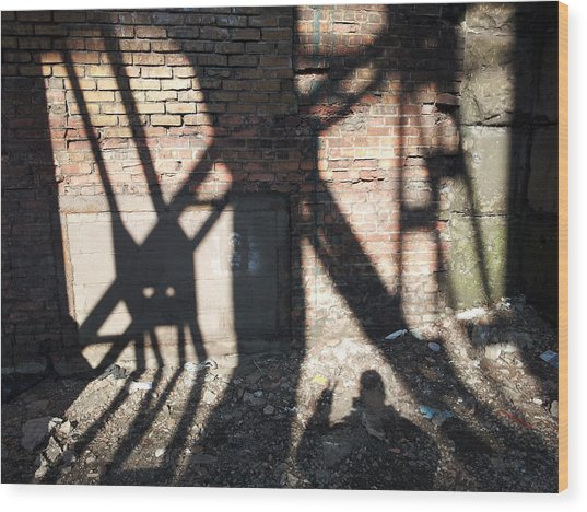 Shadowcat Wood Print