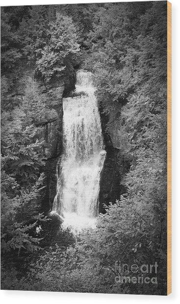 Shadowed Falls Wood Print