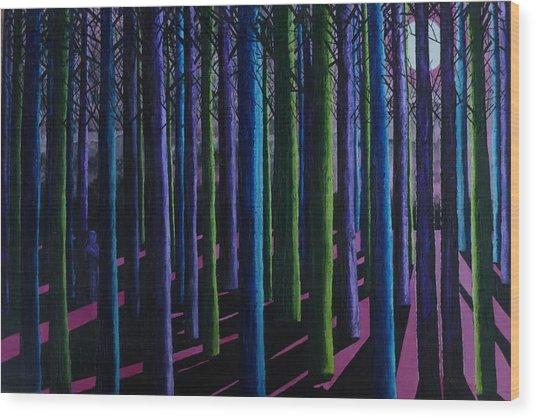 Shadows And Moonlight Wood Print