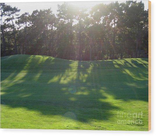 Shadows At Poppy Hills Wood Print