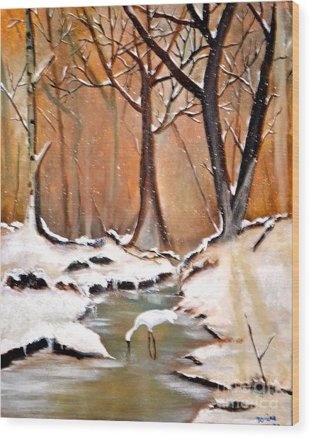 Shadows Beyond Winter Wood Print