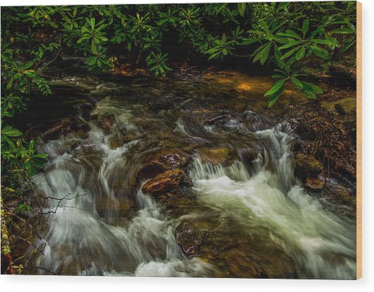 Shady Brook Wood Print by Russ Burch