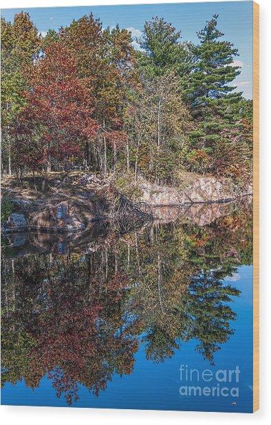 Shambeau Park Fall Reflection Wood Print