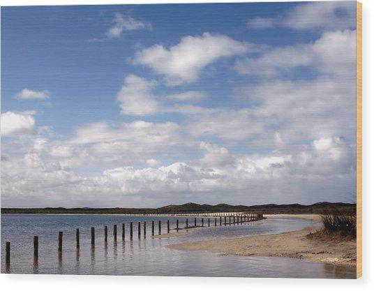 Shark Bay Western Australia Wood Print
