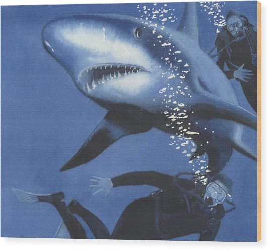 Sharkbait Wood Print by Denny Bond