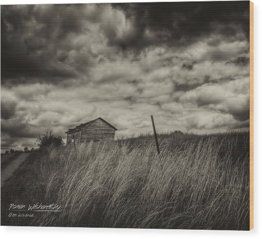 Shed And Field Wood Print