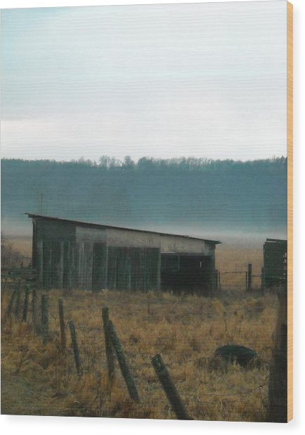 Shed In A Field Wood Print