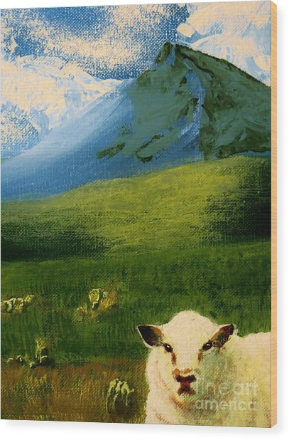 Sheep Looking In Wood Print