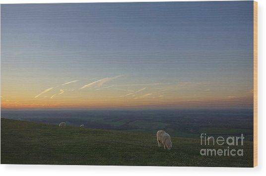 Sheep On The Gibbit Wood Print
