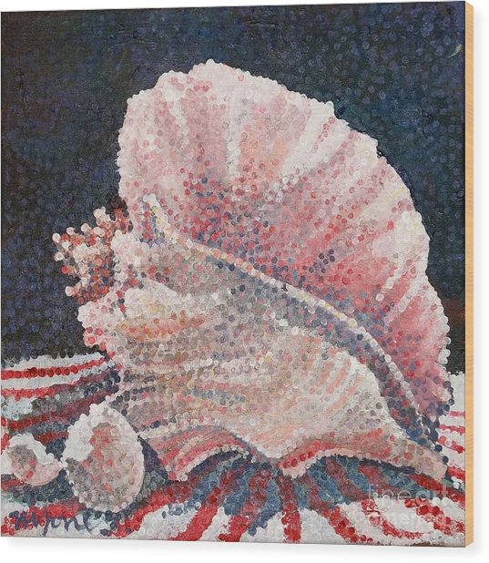 Shell Collection Wood Print by Micheal Jones