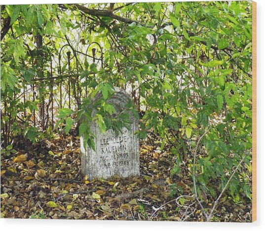 Sheltered Grave Wood Print