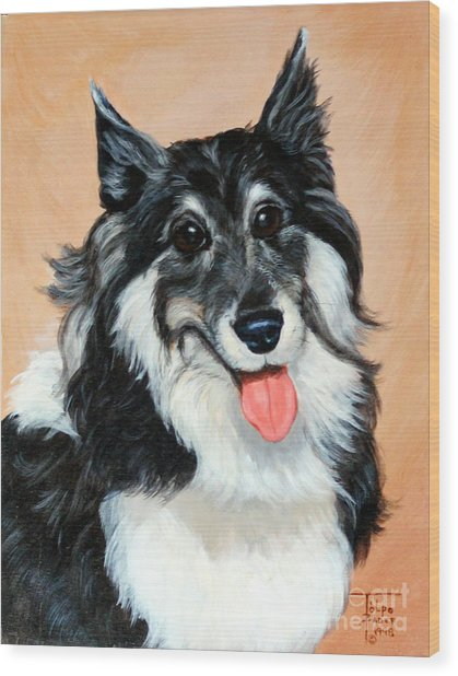 Sheltie Wood Print