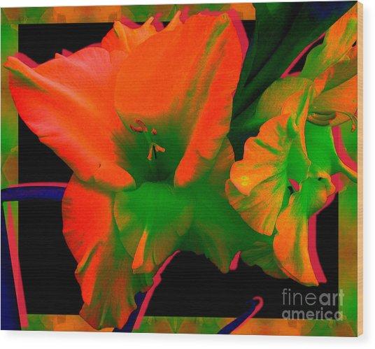 Sherbert Gladiolus Wood Print