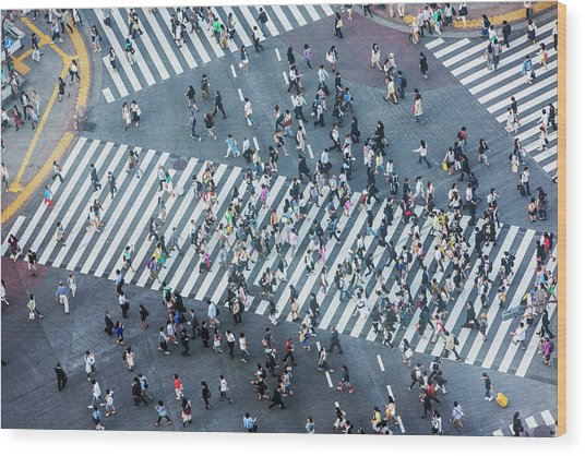 Shibuya Crossing Aerial Wood Print by Davidf