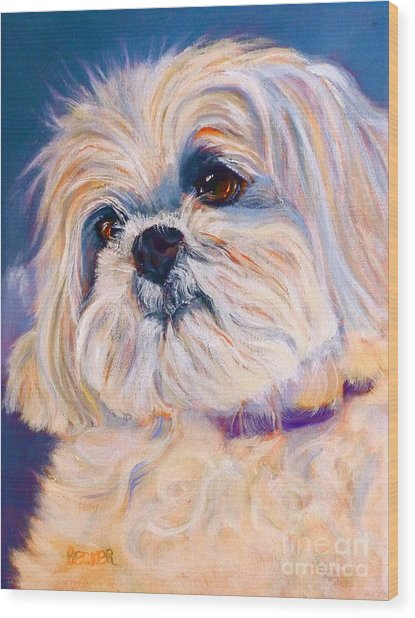 Shih Tzu Rescue Wood Print