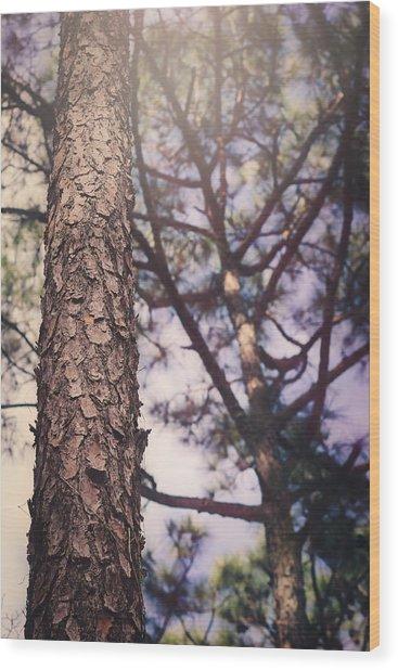 Shine Down Wood Print
