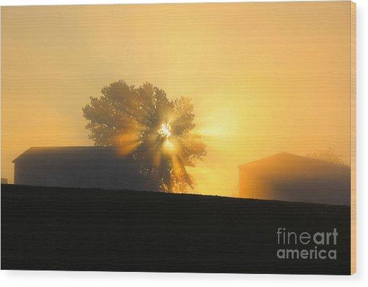 Shine On Wood Print