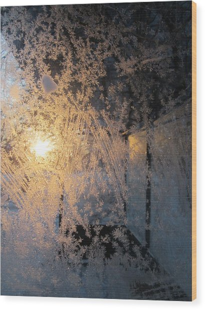 Shines Through And Illuminates The Day Wood Print