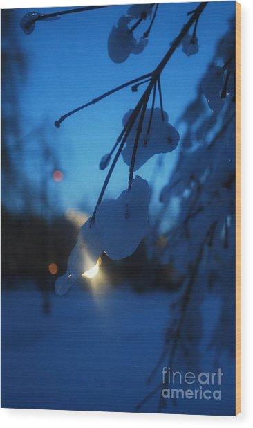 Shining Flakes Wood Print by Susan Hernandez